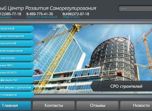 ecrs-spb.ru(1)